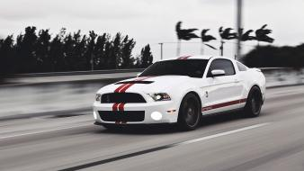 Cars ford monochrome mustang races wallpaper