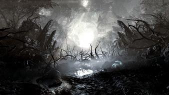 Landscapes death trees dark wallpaper