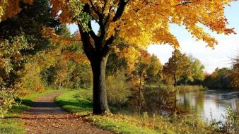 Landscapes nature roads rivers autumn wallpaper
