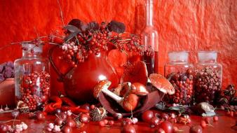 Red mushrooms berries wallpaper