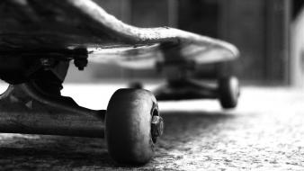 Skateboarding skateboards monochrome skateboard wheels skate wallpaper