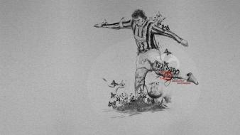 Sports soccer del piero wallpaper