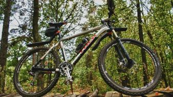 Wood forest bicycles trek wallpaper