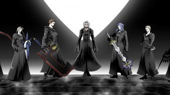 Kingdom hearts larxene organization xiii wallpaper