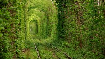 Nature love tunnels ukraine wallpaper