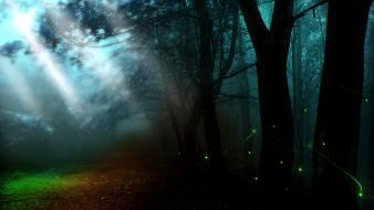 Nature trees dark forest shadows mysterious wallpaper