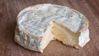 Brie cheese food tables wheel Wallpaper