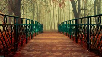 Fantasy nature trees forest seasons bridges reality kr wallpaper