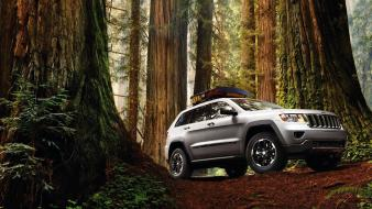 Forest cars jeep grand cherokee wallpaper