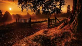 Nature sun trees old path gate wallpaper