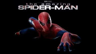 Spider-man posters marvel black background the amazing Wallpaper