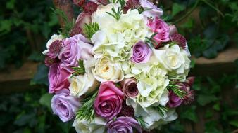 Flowers bouquet roses hydrangeas wallpaper