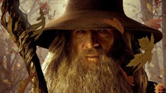Gandalf wizards the hobbit ian mckellen wallpaper