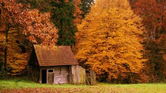Landscapes autumn (season) forest cottage wallpaper