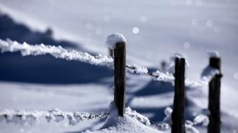 Landscapes nature snow wire protection wallpaper