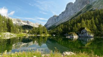Landscapes nature trees slovenia lakes reflections wallpaper