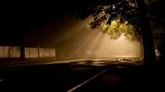 Light trees dark roads reflections Wallpaper