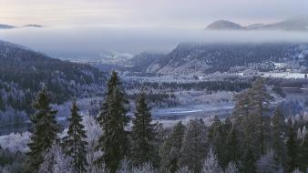 Mountains winter snow trees forest hills frost rivers Wallpaper