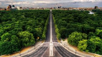 Nature trees forest highway roads cities wallpaper