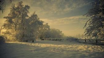 Nature winter snow trees shadows bench hoarfrost wallpaper