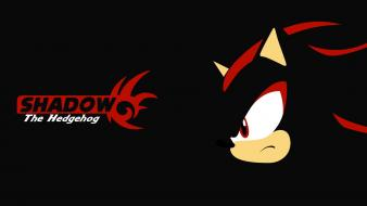 Sonic shadow the hedgehog wallpaper