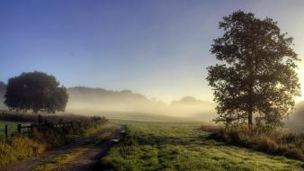 Trees fences path fog roads farms way Wallpaper