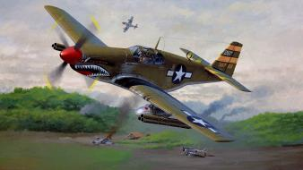 Airplanes japanese p-51 b mustang widescreen Wallpaper