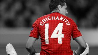 Fc javier hernandez chicharito ch14 little pea wallpaper