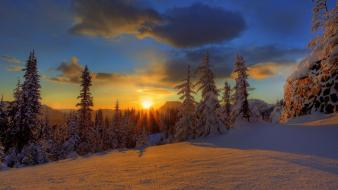 Sunset winter snow forest hdr photography skies Wallpaper