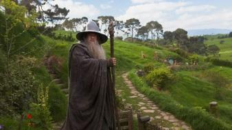 Wizards the hobbit ian mckellen staff shire wallpaper