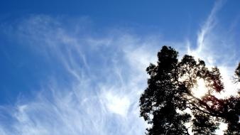 Clouds nature trees sunlight skyscapes blue skies wallpaper