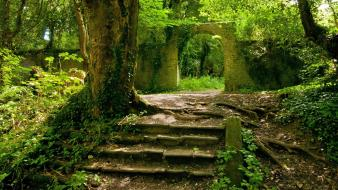 Green nature jungle forest stairways overgrowth arch Wallpaper