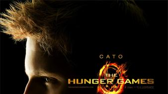Movie posters the hunger games alexander ludwig wallpaper