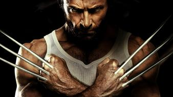 Movies wolverine hugh jackman x-men: origins wallpaper