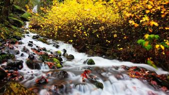 Stones streams moss long exposure waterfalls autumn wallpaper