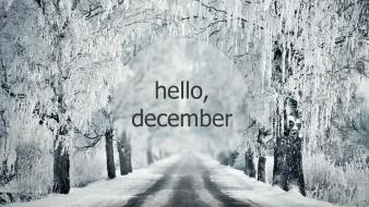 Winter new year december hello 2013 wallpaper