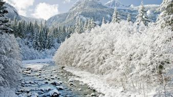 Ice landscapes nature winter snow wallpaper