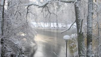 Ice winter snow trees rivers wallpaper