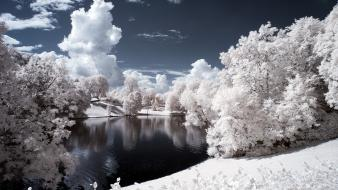 Landscapes nature trees ponds infrared photography wallpaper