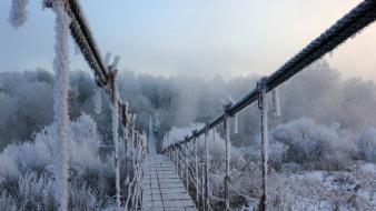 Nature winter white fog bridges frost rivers wallpaper