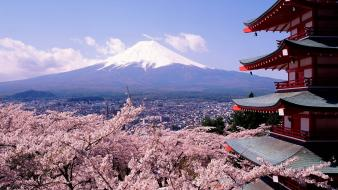 Chureito pagoda japan mount fuji cherry blossoms wallpaper