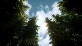 Clouds trees the elder scrolls v: skyrim wallpaper