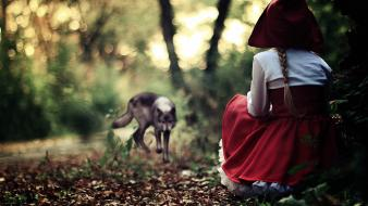 Forest little red riding hood fairy tales wolves wallpaper