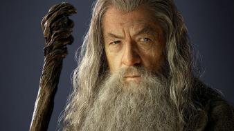 Gandalf beard wizards the hobbit ian mckellen staff wallpaper