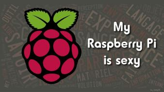 Raspberries raspberry pi wallpaper
