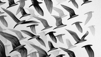 Flying grayscale artwork birds wallpaper