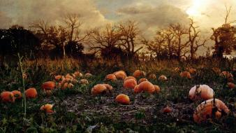 Forest haunted pumpkins patch autumn wallpaper