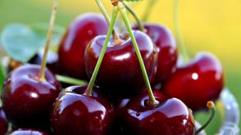 Fruits cherries crop sweet cherry wallpaper