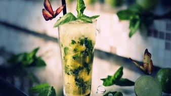 Fruits food mojito Wallpaper