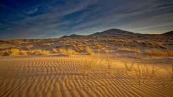 Landscapes nature sand grass shadows bushes sky wallpaper